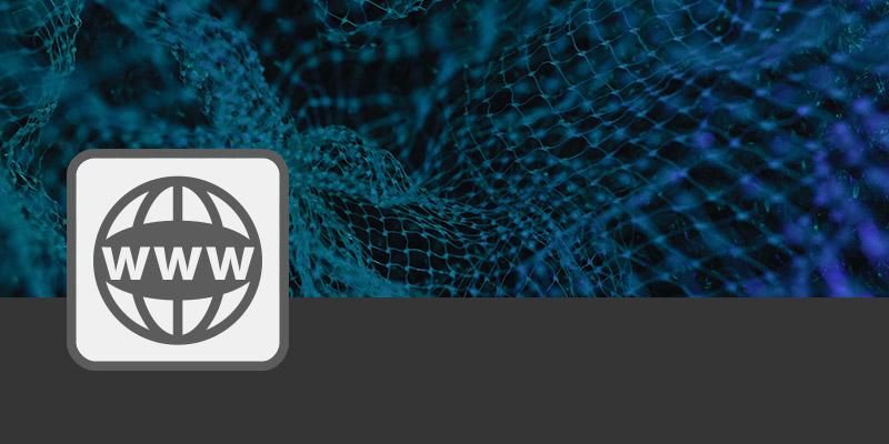 Web_Export